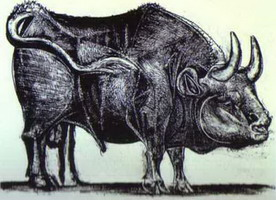 Pablo Picasso. The Bull. State III